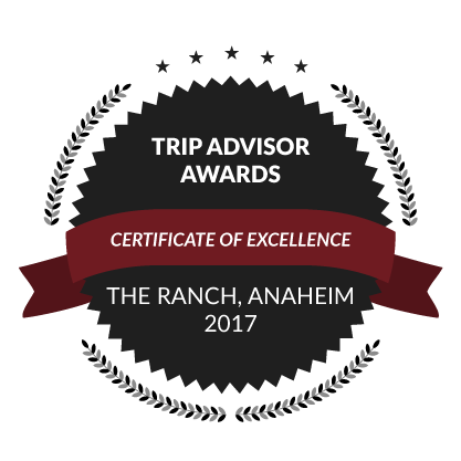 Trip Advisor Awards, Certificate of Excellence, 2017
