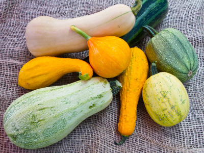 Yellow and green squash, gourds, and zucchini on a burlap bag.